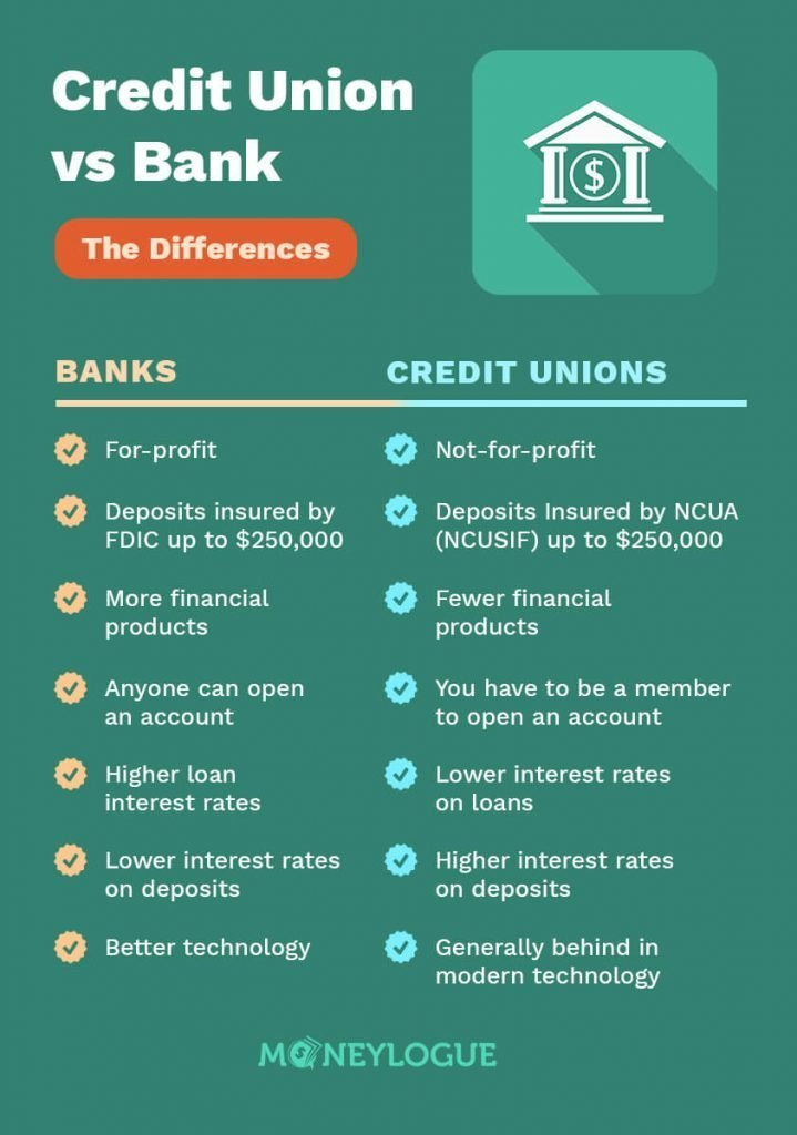 credit union vs bank infographic